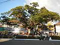 SantaCruz,Zambalesjf0059 04.JPG