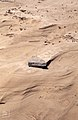 Scouring of sand from Bologna beach. Andalusia gales. 1975 (37498335550).jpg