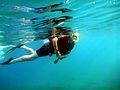 Scuba Diver Snorkeling.jpg