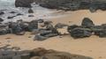 Sea, Rocks and Sand.png