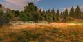 Second Life Landscape champ des fleurs.png