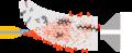 Secondary electrospray ionization mechanisim diagram.png