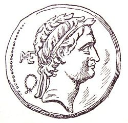 SeleucusIV - coin - face.JPG