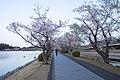 Semba Park, Ibaraki 03.jpg