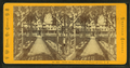 Senter House, from Garden, Center Harbor, N.H, by Pease, N. W. (Nathan W.), 1836-1918.png