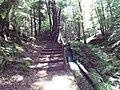 Sentiero Archiforo 1.jpg