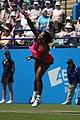 Serena Williams (5849356708).jpg
