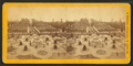 Shaw's Garden from Hot House, looking south, from Robert N. Dennis collection of stereoscopic views.png