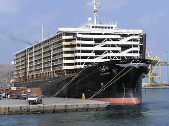 Livestock carrier - An open livestock carrier with a cargo of sheep from Australia, docked in Oman