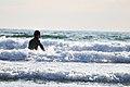 Shonan Surfing.jpg