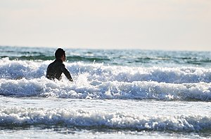 Bondi Tsunami - A Japanese man surfing.