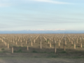 Sierras from the Sacramento Valley.png
