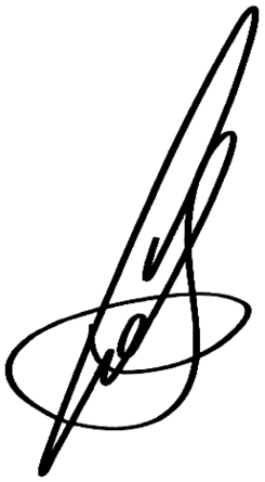 Signature of Sergey Sobyanin.png