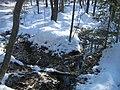 Small spring in winter.JPG