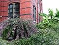 Smithsonian Gardens in October (22721480846).jpg