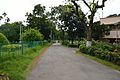 Smriti Path - Bengal Engineering and Science University - Sibpur - Howrah 2013-06-08 9329.JPG