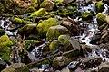Sol Duc Falls 5.jpg