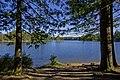 Spider Lake, Nanaimo, Vancouver Island (36450095580).jpg