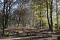 Spielplatz Schopenhauer Wald Neubiberg-3.jpg
