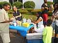 Spring Fling Community Celebration! (14096198168).jpg