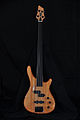 Stagg Fretless Bass.jpg