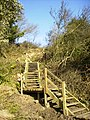 Staircase on The Cleveland Way - geograph.org.uk - 597748.jpg