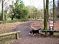 Start of All Ability Trail, Wendover Woods - geograph.org.uk - 1192326.jpg