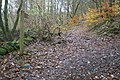 Start of the footpath from Skelwith to Hawkshead or Coniston - geograph.org.uk - 1595079.jpg