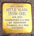 Stolpersteine Gouda Krugerlaan109 (detail 3).jpg
