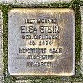 Stolpersteine für Stein, Nußbaumerstraße 84, Köln-5306.jpg
