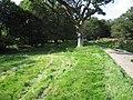 Stream by a lane - geograph.org.uk - 968847.jpg