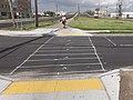Stripes on Davis Parkway.jpg