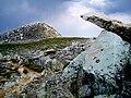 Summit of Medicine Bow Peak, Wyoming.jpg