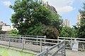 TW 台灣 Taiwan TPE 台北市 Taipei City 中正區 Zhongzheng District 南京西路 Nanjing West Road footbridge 承德路 Chengde Road morning August 2019 IX2 35.jpg