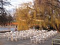 Tables, chairs and willow by the Serpentine Restaurant - geograph.org.uk - 1757701.jpg
