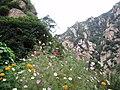 TaihangMountain3.jpg