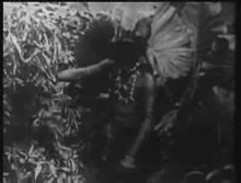 Archivo:Tarzan of the Apes (1918).webm