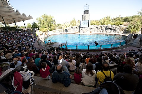 Teatro lago faunia