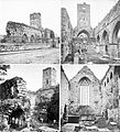 The Abbey, Sligo aka Dominican Friary (8671560382).jpg