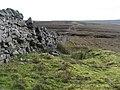 The Cumbria-Northumberland border (3) - geograph.org.uk - 613511.jpg