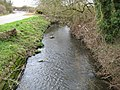 The Cut at Bott Bridge - geograph.org.uk - 1212914.jpg