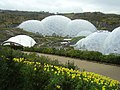 The Eden Project - geograph.org.uk - 153505.jpg