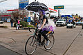 The Krewe of Highland Parade, Shreveport, LA Bicycle.jpg