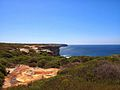 The Royal National Park Coast Track - panoramio (2).jpg