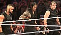 The Shield 2014.jpg
