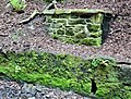 The Wallace Spa Well, Pittencrieff Glen, Dunfermline. Outflow.jpg
