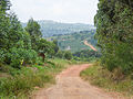 The road in Mbazzi, Mpigi district in Uganda 01.jpg