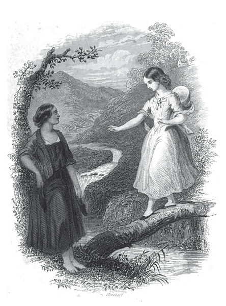 File:The wide wide world Frontispiece.jpg