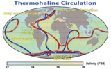 Thermohaline Circulation 2.png