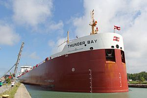 Canada Steamship Lines - Thunder Bay upbound out of Lock 2 of the Welland Canal